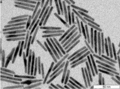 Fraunhofer CAN's Nanorods image